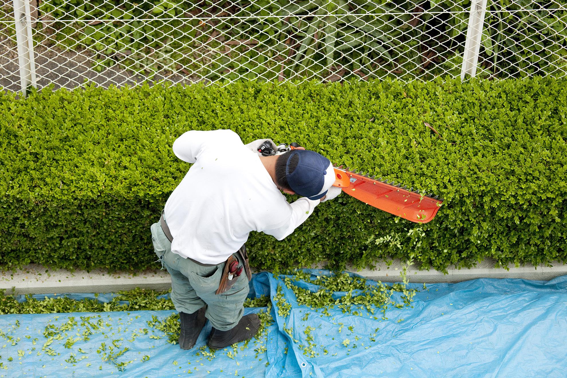 Prizma FM Zrt.: Kertészet, Növénygondozás, Zöldterületkarbantartás, Fűnyírás, Öntözés, Hótakarítás a Prizma Csoporttól. Növénygondozás, kaszálás, hóeltakarítás komplex megoldás! Modern gépparkunk és felkészült munkatársaink segítségével a legváratlanabb helyzetekben is hatékonyan tudjuk ügyfeleink igényeit kielégíteni.